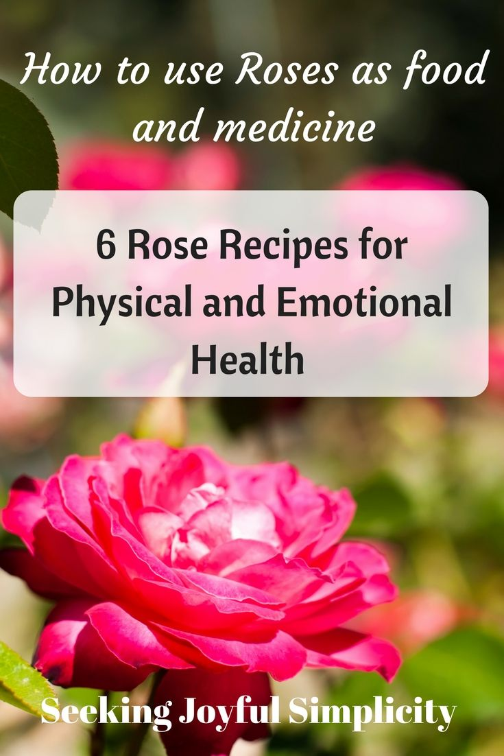Exquisite Graceful Alluring The Rose Is Associated With Sophisticated Beauty And Love But The Rose Is Rose Recipes Wild Rose Detox Recipes Wild Rose Detox