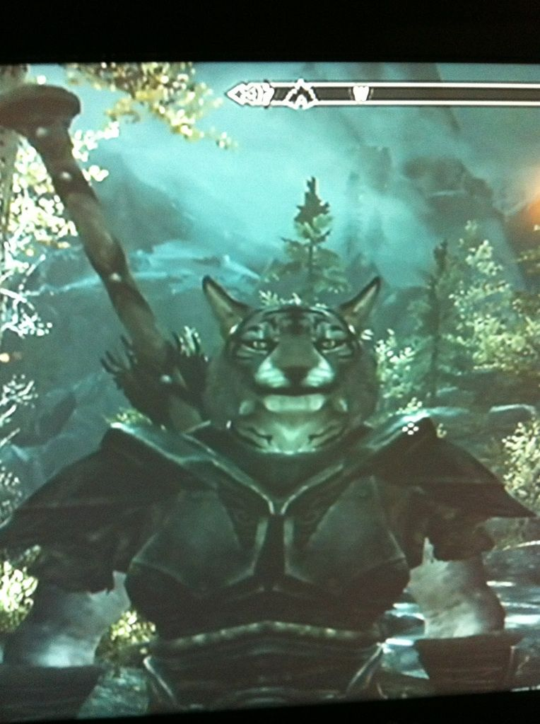 The first thing I did in Skyrim was start as a Khajiit and then become a werewolf. I'm Catdog!