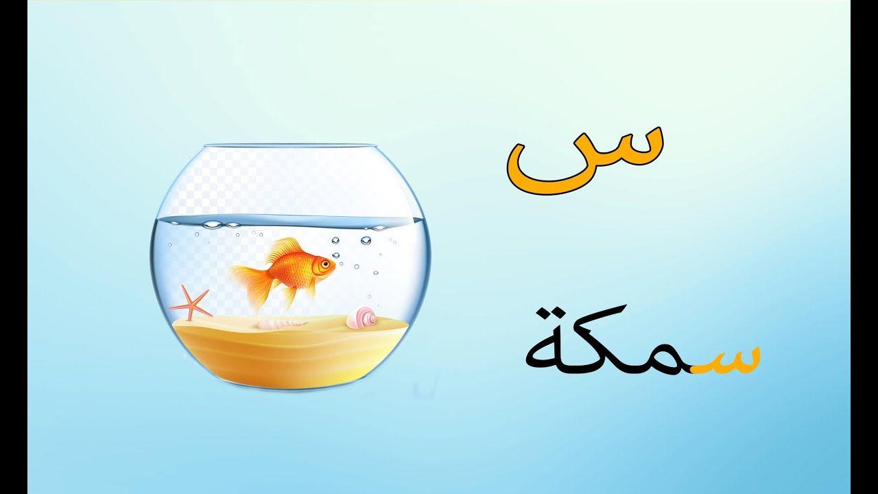 تعلم كتابة حرف السين للأطفال تأسيس الأطفال تعليم الحروف العربية Stemless Wine Glass Wine Glass Glassware