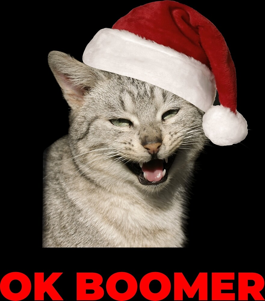 Ok Boomer Funny Millennial Cats Meme Young Cat Lovers By Applecrunch Redbubble Cat Lovers Cat Memes Ok Boomer