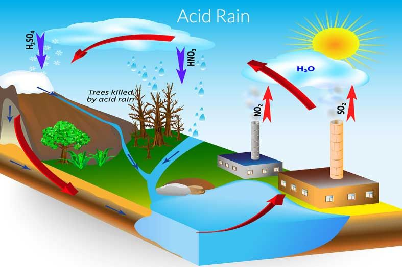 shown here is a diagram of acid rain and how it cycles through the  environment  due to the prolonged amount of sulfur dioxide in the  atmosphere,