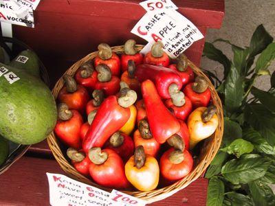 Basket Of Cashew Apples Cashew Apple Cashew Top Diets