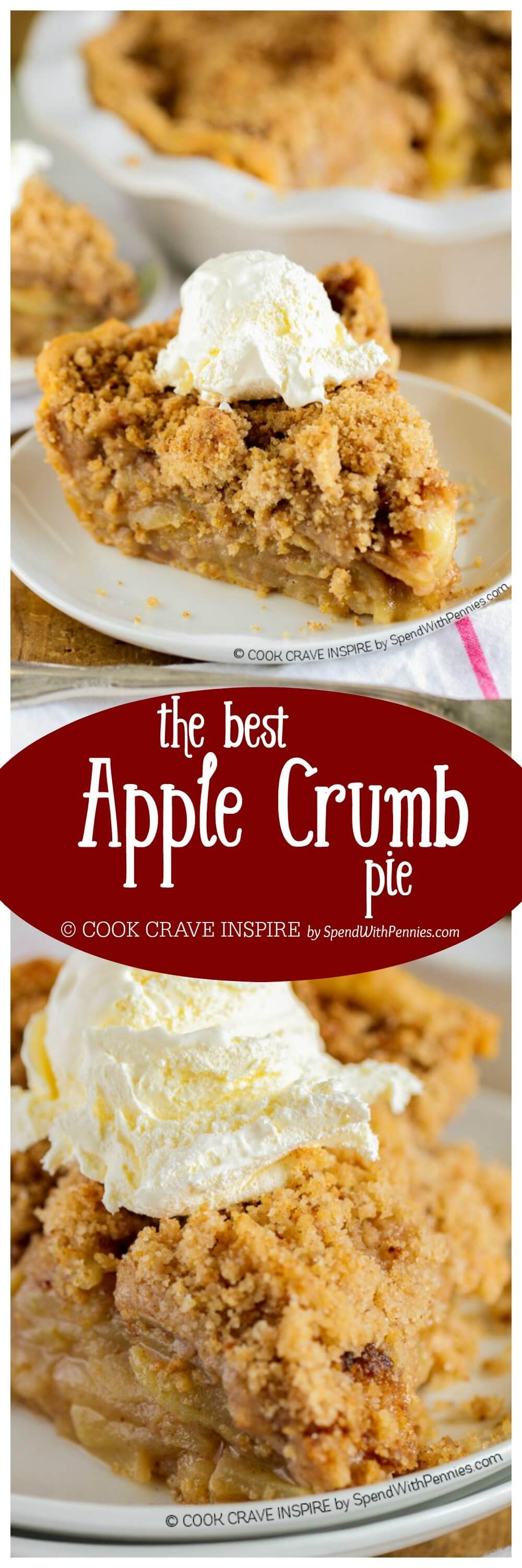The BEST Apple Crumb Pie! This is truly the best apple pie recipe you'll ever make! Loaded with fresh tart apples and topped with a sweet brown sugar crumble, this is one recipe that will be requested over and over! #applerecipes