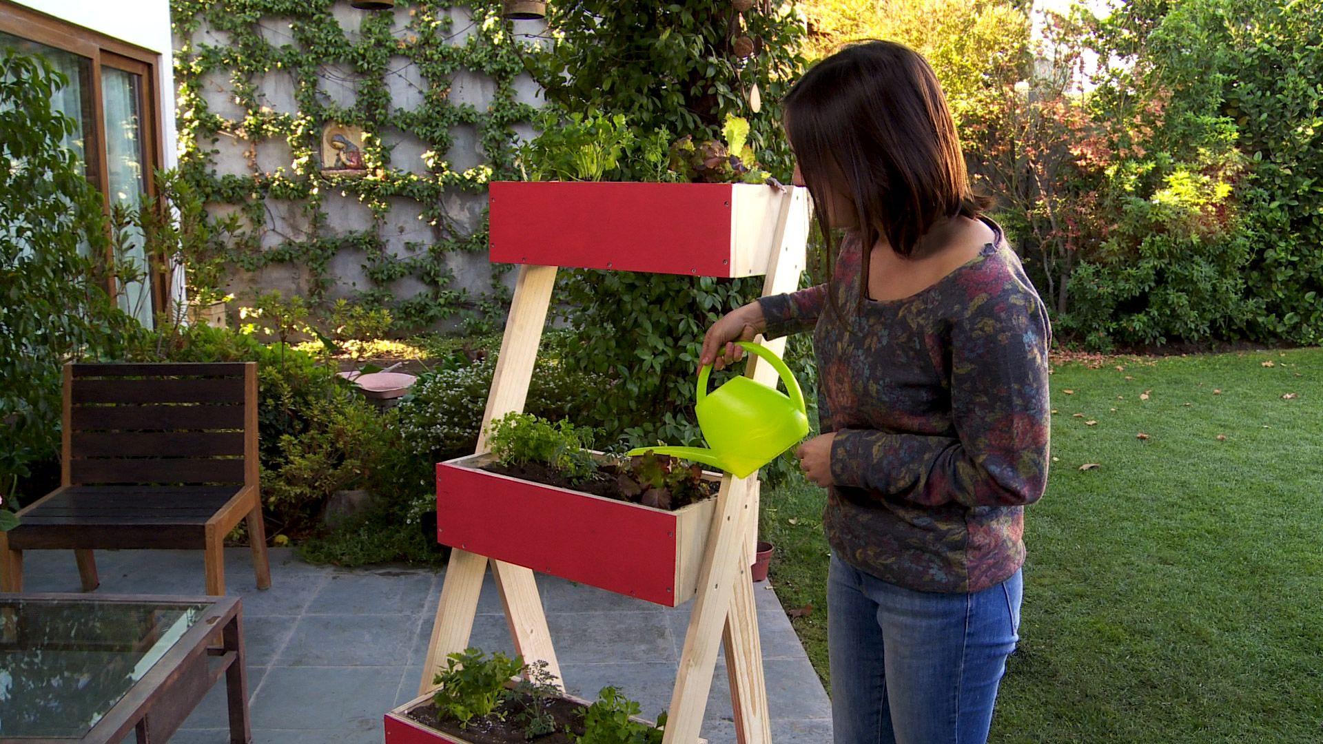 Cuando queremos aprovechar los muros para poner plantas o for Que plantas poner en una jardinera
