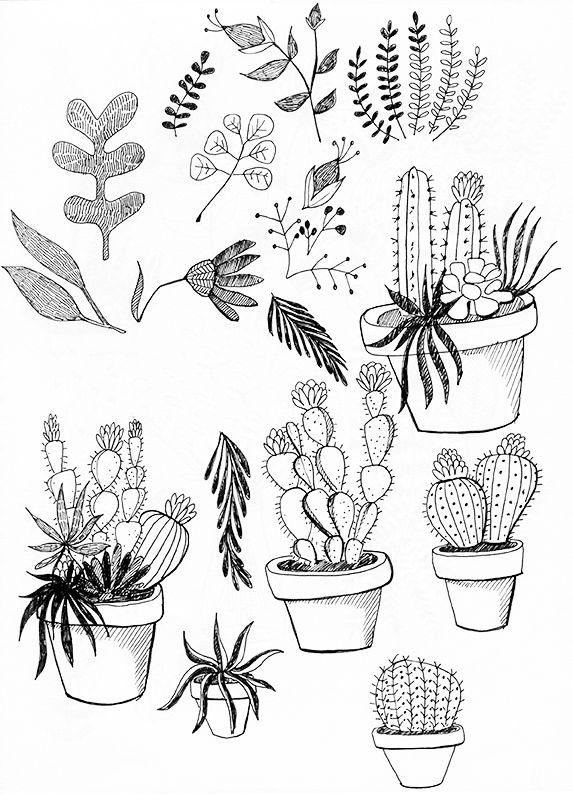 Idée Pour Dessiner Des Plantes Fleurs Cactus Comment