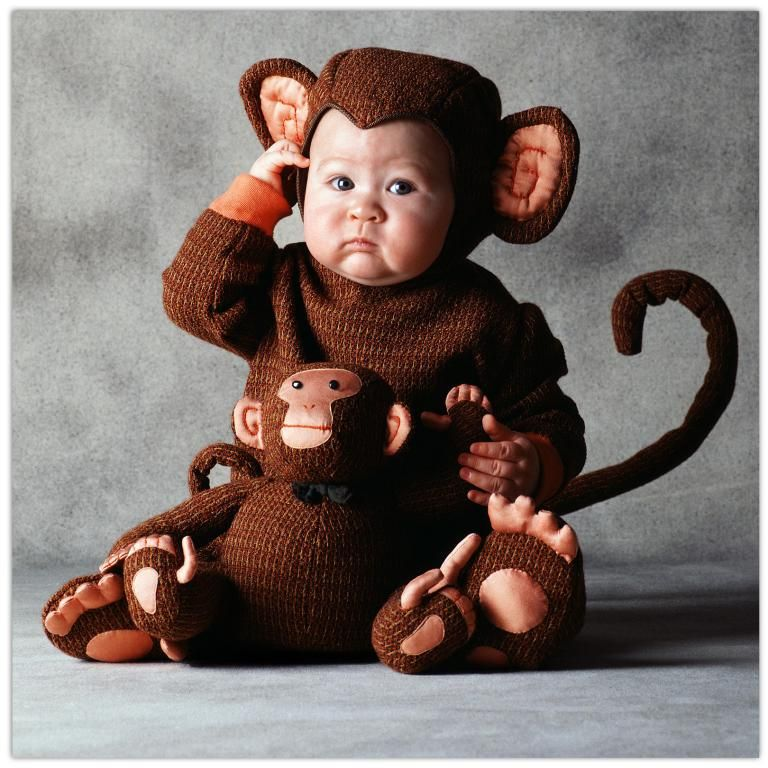 halloween costume for baby exclusive tom arma monkey