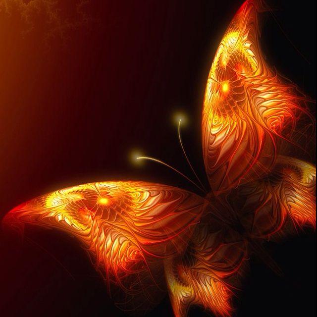 картинки мотылек летит на огонь и вода какими