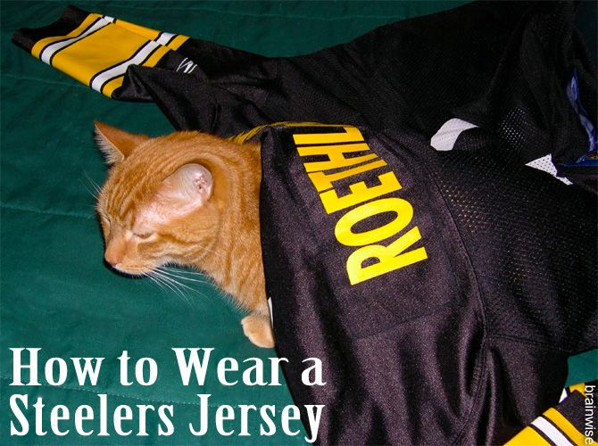 pretty nice 3f242 af25e How to Wear a Steelers Jersey | Pittsburgh Sports Nuts ...