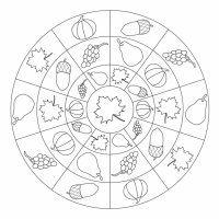 Herbst-Mandala-Fruchte5005187986ec5_w652503ccc7708c91.jpg ...