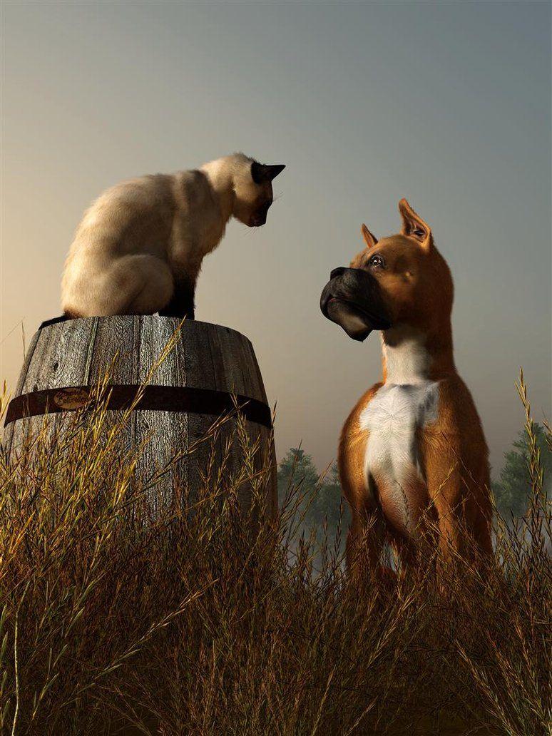 The Peace Accord by deskridge on DeviantArt Animal Art