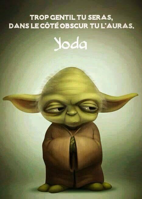 Les Repliques De Maitre Yoda Cafe Drole Maitre Yoda Et Maitre