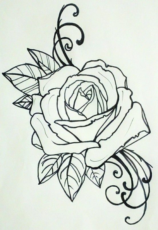2 Roses Tattoo Google Search Rose Tattoos Tattoo Coloring Book Rose Drawing Tattoo