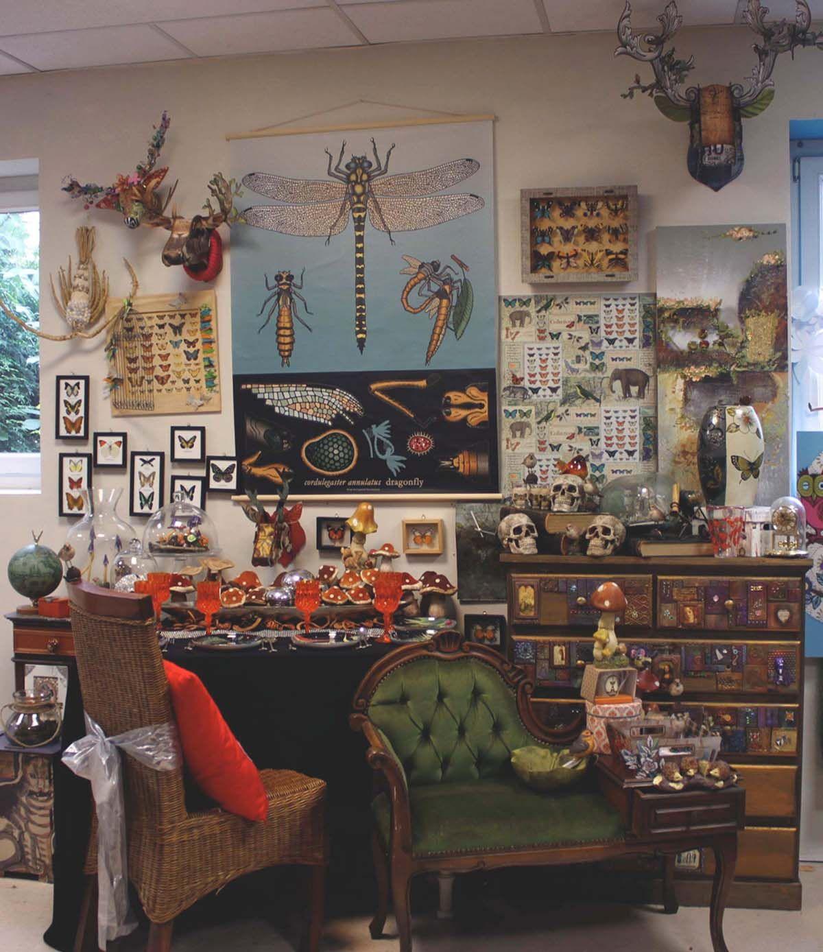 curiosit bing images ambiance pinterest alsace cabinet de curiosit et vitrines. Black Bedroom Furniture Sets. Home Design Ideas