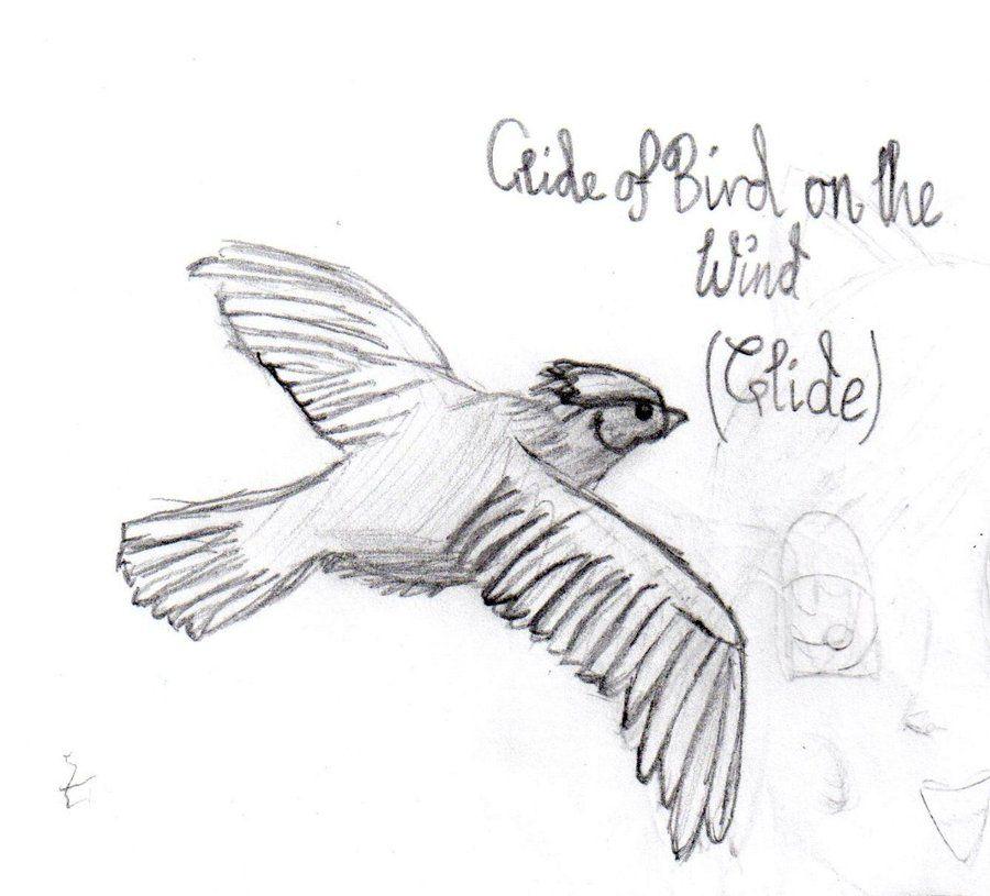 Tumblr Drawings Birds For birds drawing tumblr   Hair   Pinterest