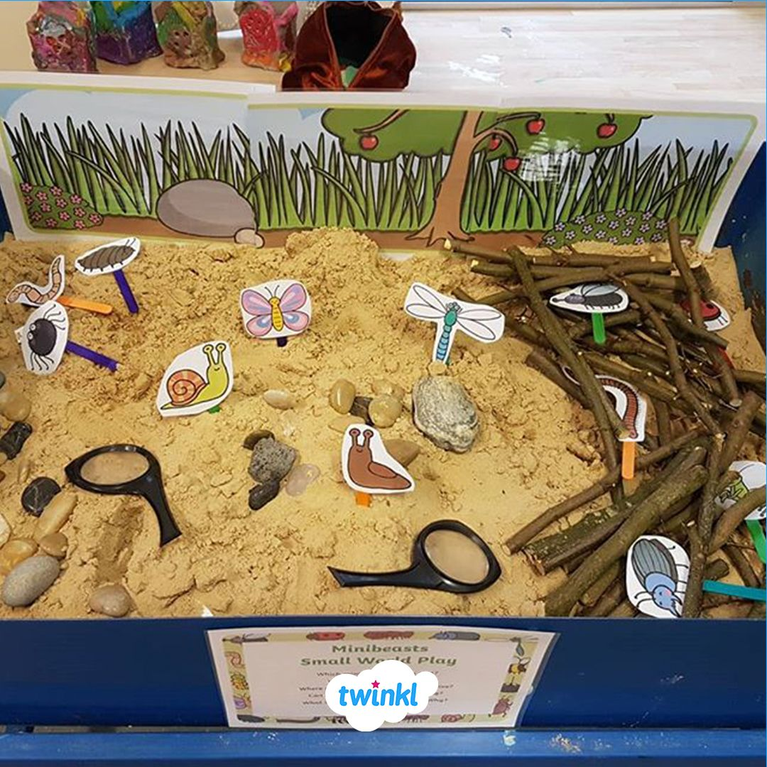 Discover Different Minibeasts And Their Habitats With This