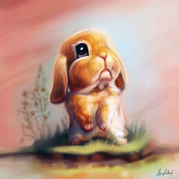 """Kết quả hình ảnh cho a lonely rabbit"""""""