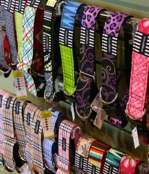 Fresh and Fun - That's what Waggiwear is all about. Their love for color and design, along with the signature black and white striped fabric found behind every Waggiwear label, make their collars and leashes stand out among the rest.