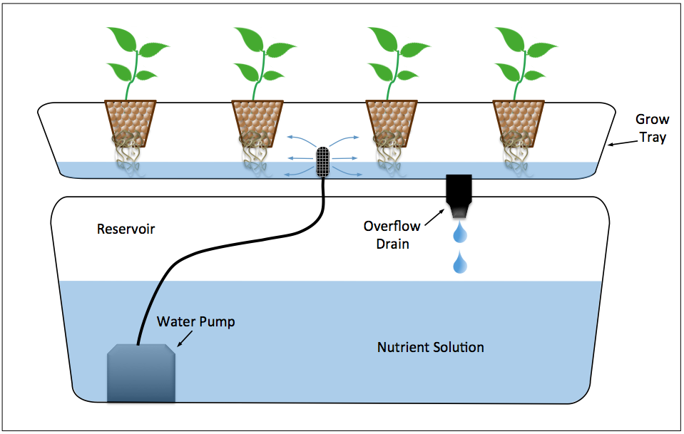 Diagram Of An Ebb Flow Hydroponic System Diagram Ebb Flow Hydroponic System In 2020 Hydroponics System Hydroponics Hydroponic Plants