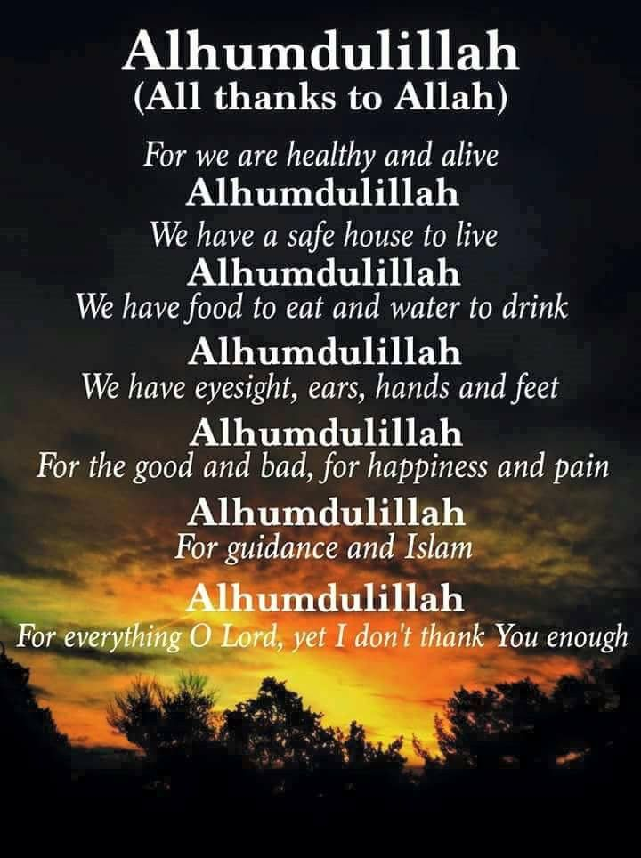 The perfect wisest and shortest quote of the world the perfect wisest and shortest quote of the world alhamdulillah all praise thecheapjerseys Images