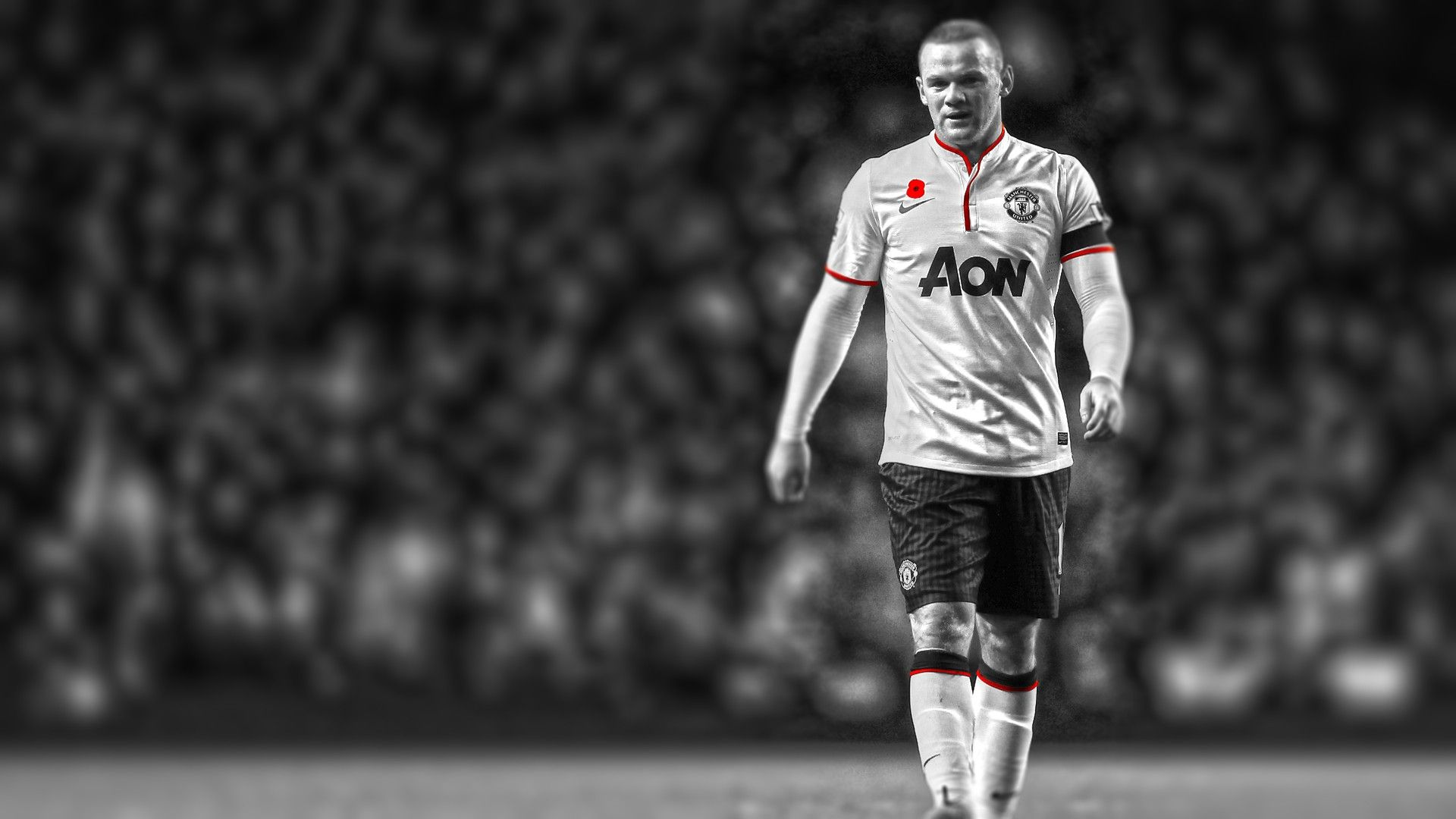 Are you looking for wayne rooney hd wallppers download latest collection of wayne rooney hd