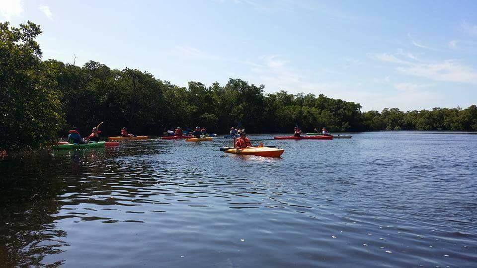 Single Kayak Rental Naples In 2020 Kayaking Kayak Tours Tandem Kayaking