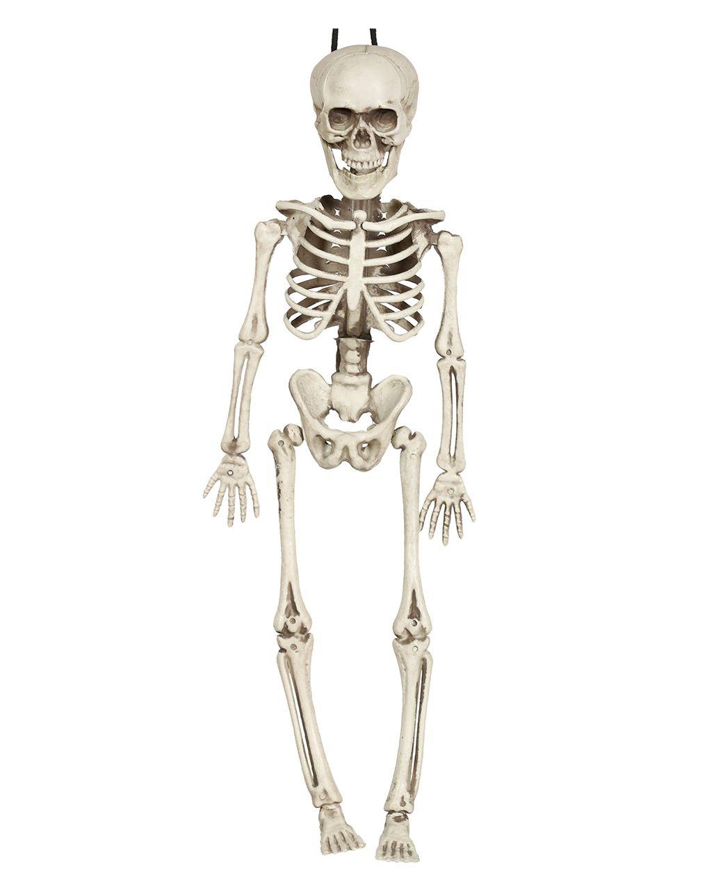 Mini Skelett Hangefigur 40cm Skelett Deko Horror Shop Com Halloween Deko Figuren Deko Horror Skelett Deko