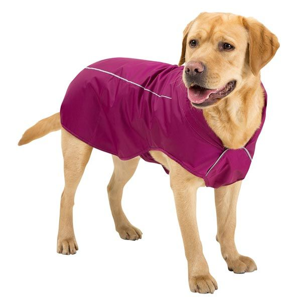 Ruffwear Hunde Regenmantel Sun Shower Alsa Hundewelt Regenmantel Hund Regenmantel Hunde
