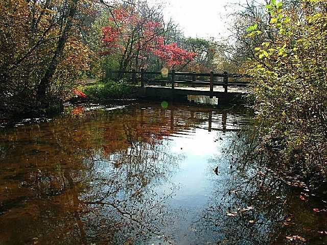 Belmont Lake State Park In Ny This Is My Sanity This Is