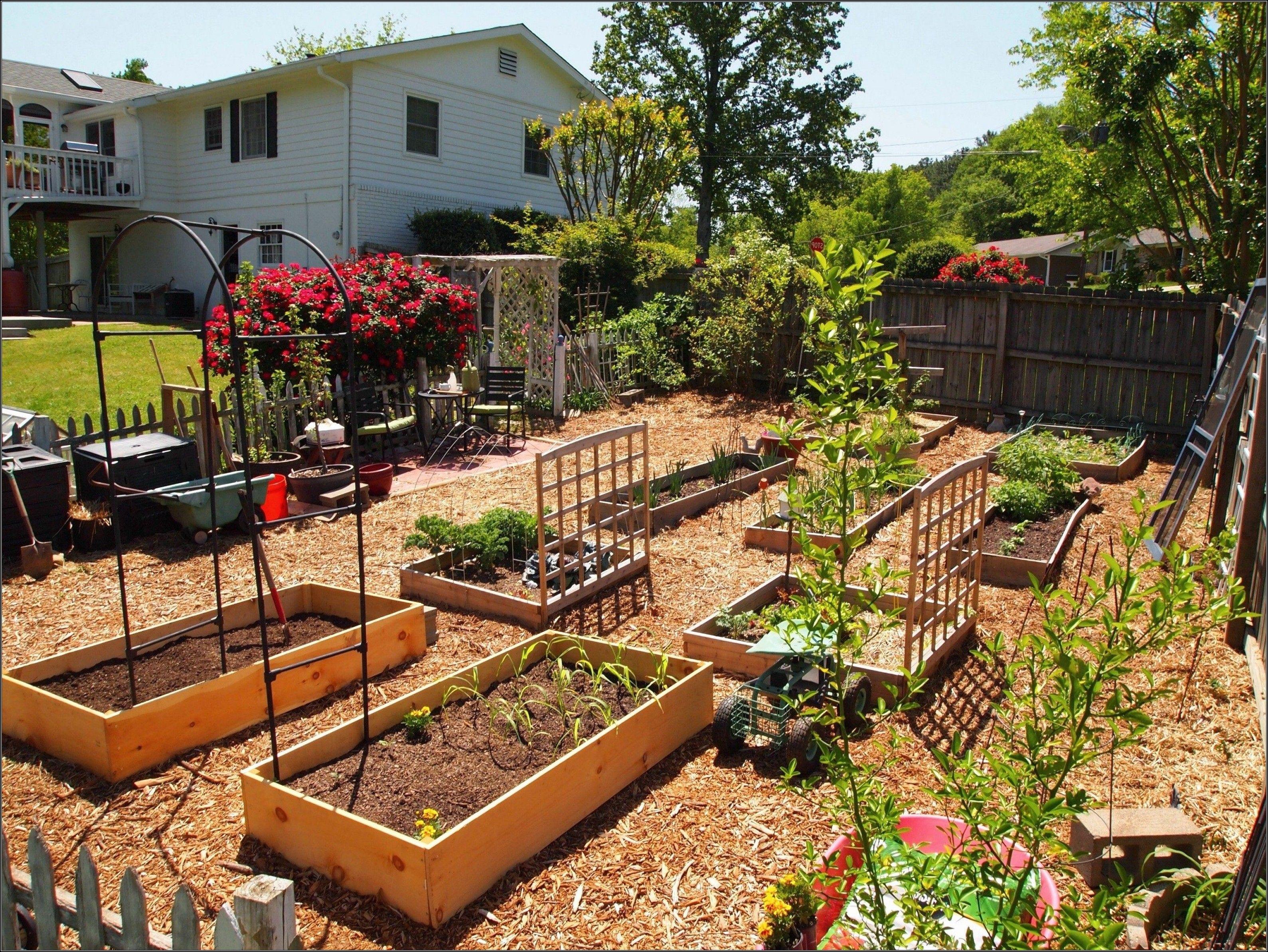 Five Tips Landscape Garden Design for Beginners >>> More ...