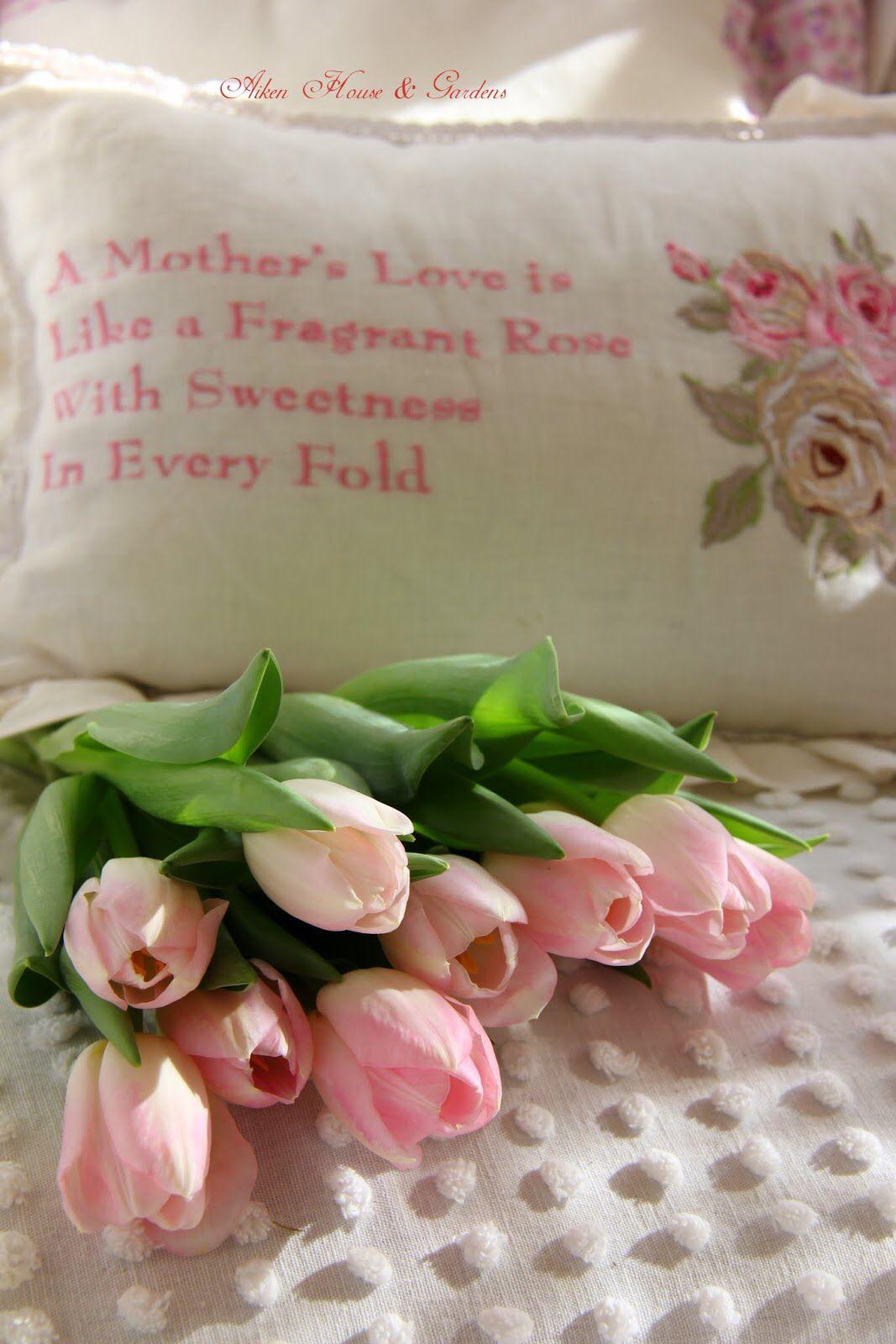 وهل هناك أعظم من حب الام عبقه ينتشر في كل مكان Pink Tulips Spring Tulips Rose Cottage