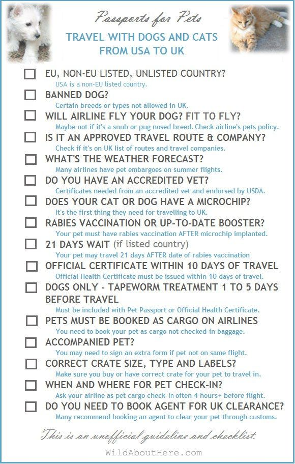 Passport For Pets Usa To Uk Checklist Traveling By Yourself