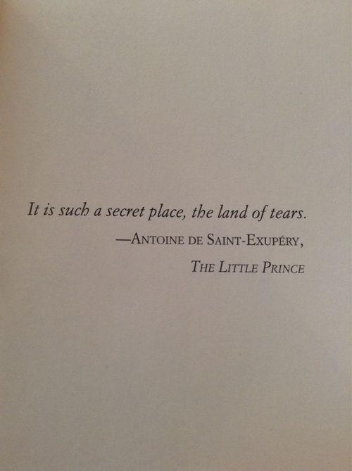 """"""" it is such a secret place, the land of tears."""" - Antoine de Saint-Exupéry - The Little Prince -"""