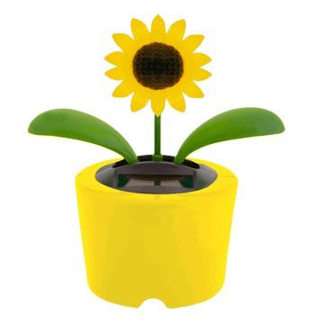 Solar-Powered Dancing Sunflower $1 - Sold at Dollar Tree. I bought one of these and it works great. I have it sitting next to a window on my desk at work. When I'm really feeling stressed it's a very inexpensive way to help me relax a little!