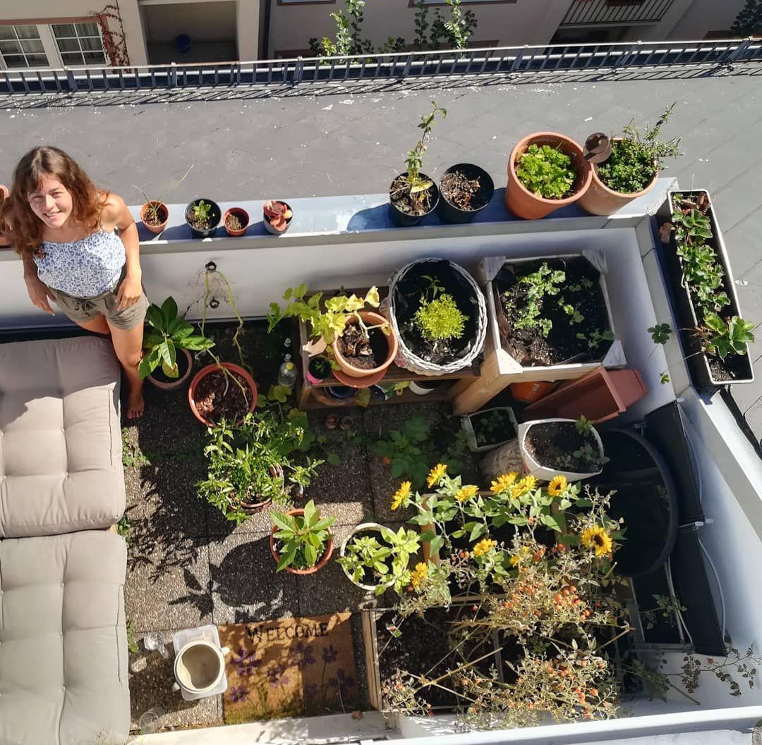 Welcome to my crib..or balcony.  Ich liebe unseren kleinen Dschungel mitten in der Stadt einfach so sehr! 🌼☀️ Es ist so schön zu sehen wie alles wächst und gedeiht. 🌱