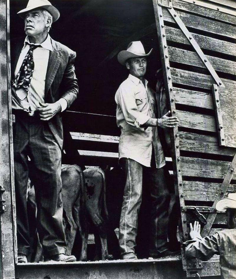 Lee Marvin I Will Be Point Blank About Liberty Valance: Paul Newman Y Lee Marvin En -Los Indeseables- (1972), De