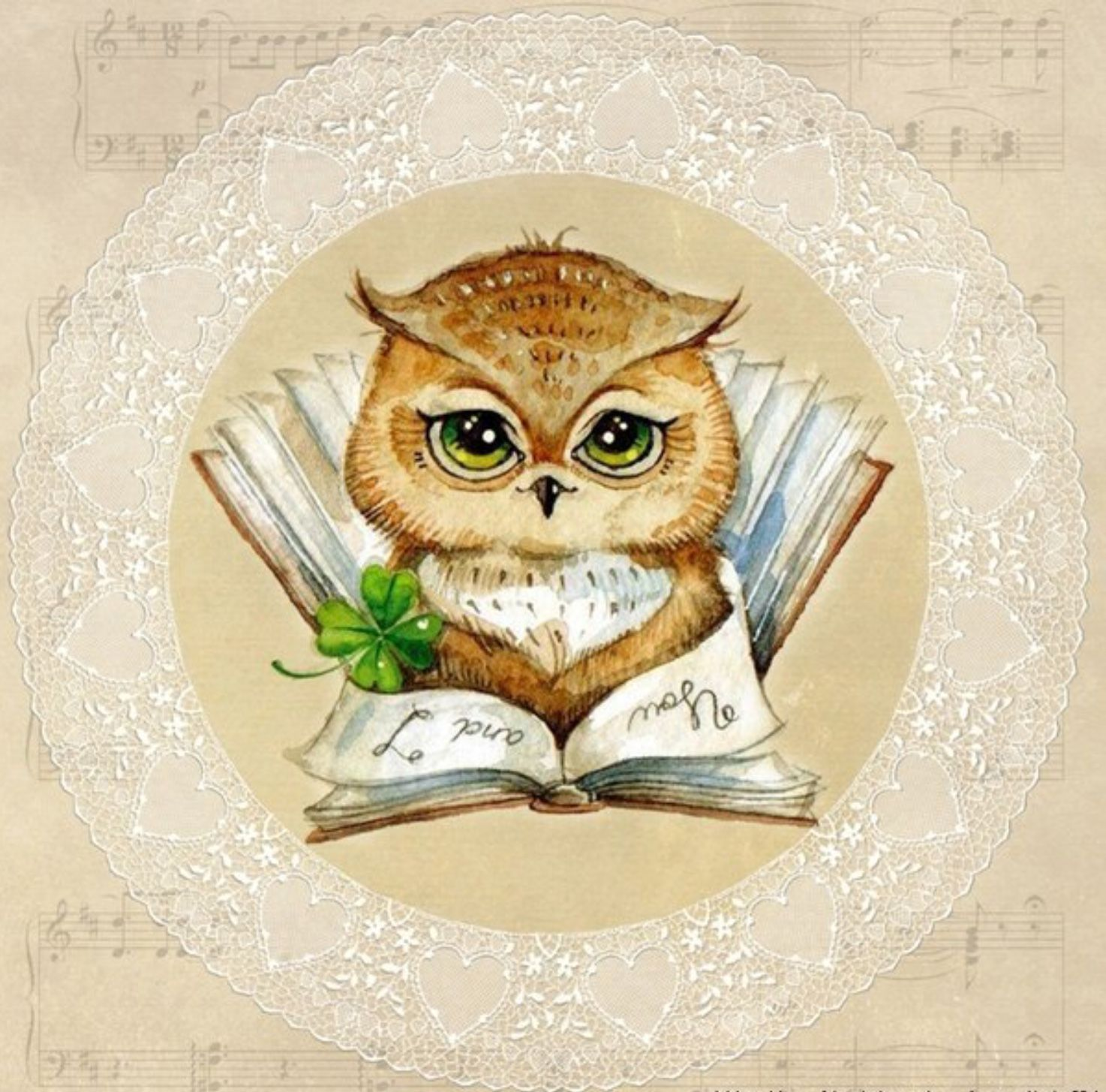 Картинки совенок нарисованный с книгой