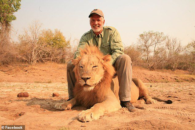 Petition Trophy Hunter Killed Sleeping Lion and Over 70