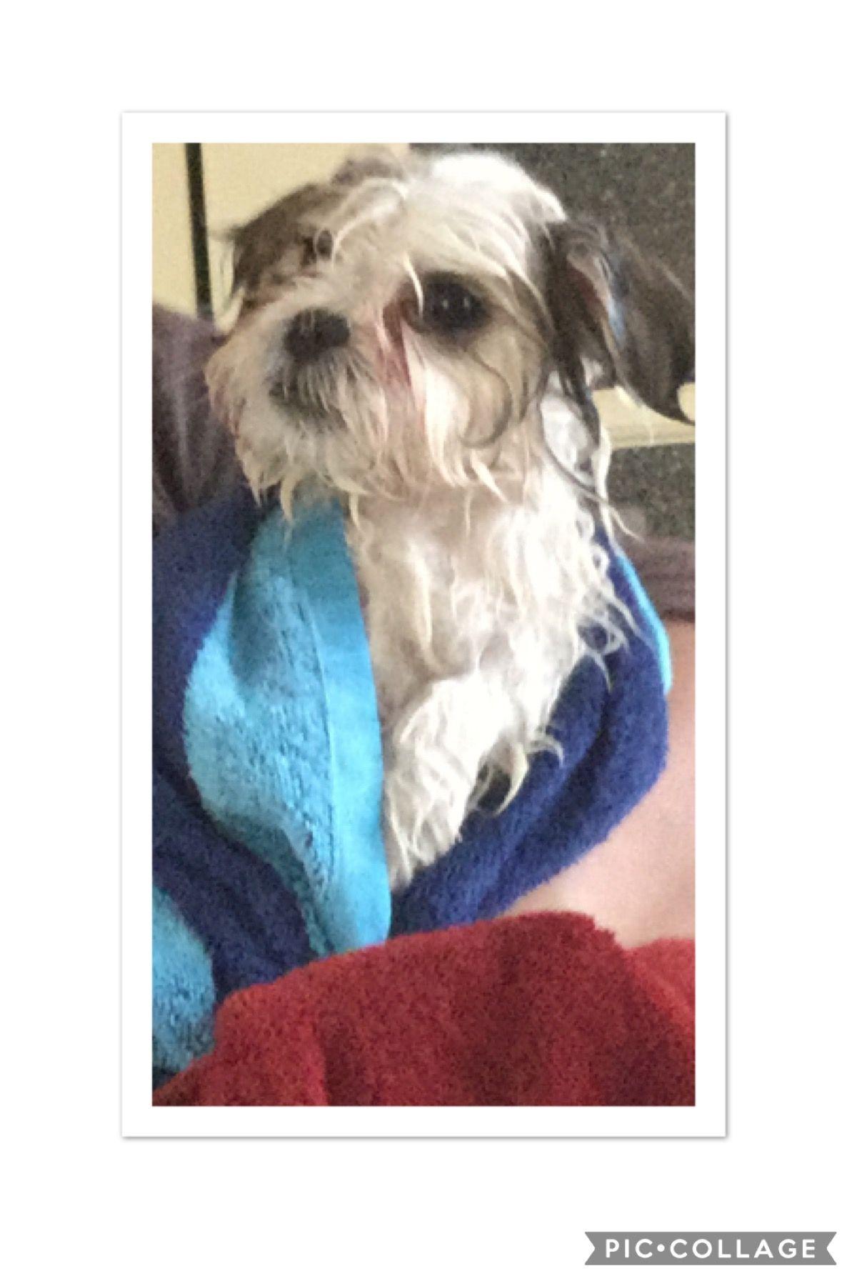 Lol😜 When he's wet