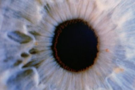 Cells from Dead people's eyes helps blind people