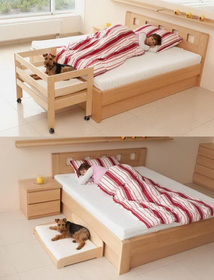 a cue bed for dogs dogs pinterest hunde holz und hundebett. Black Bedroom Furniture Sets. Home Design Ideas
