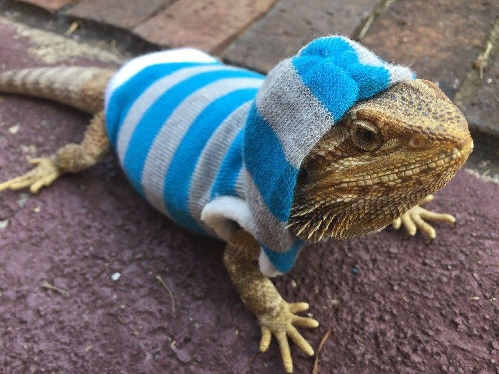 lrg sleeveless blue white stripes hoodie sweater top shirt