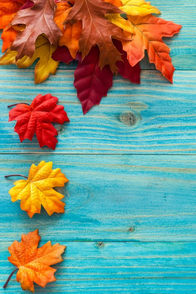 Autumn leaves Nature iPhone wallpapers mobile9 (With