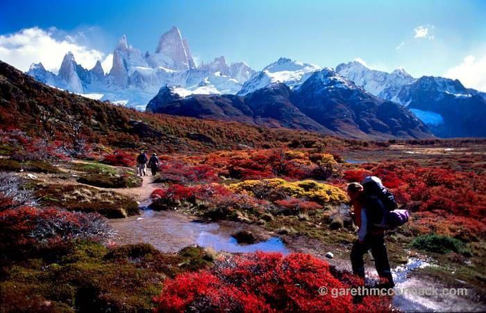 Pin by Heidi Unruh on Off the Beaten Path | Best hikes, Travel, Los  glaciares national park