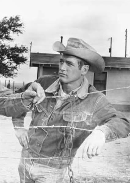 02a4066db677e Paul Newman in Hud (1963). A Denim Jacket never looked so good or conveyed  so much. He wore the iconic Lee denim Storm Rider jacket.