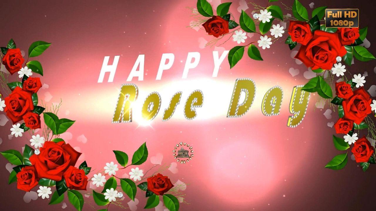 Happy Rose Day 2017wisheswhatsapp Videogreetingsanimation