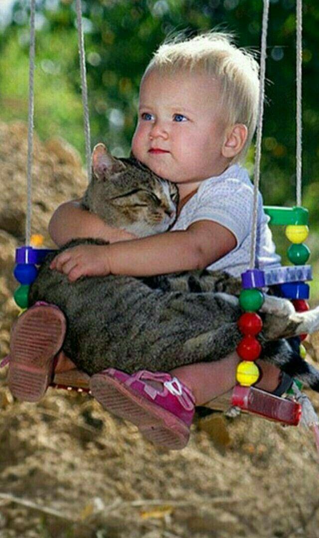 Не бойся , я тебя никому не отдам ....   Животные, Кошки и ...