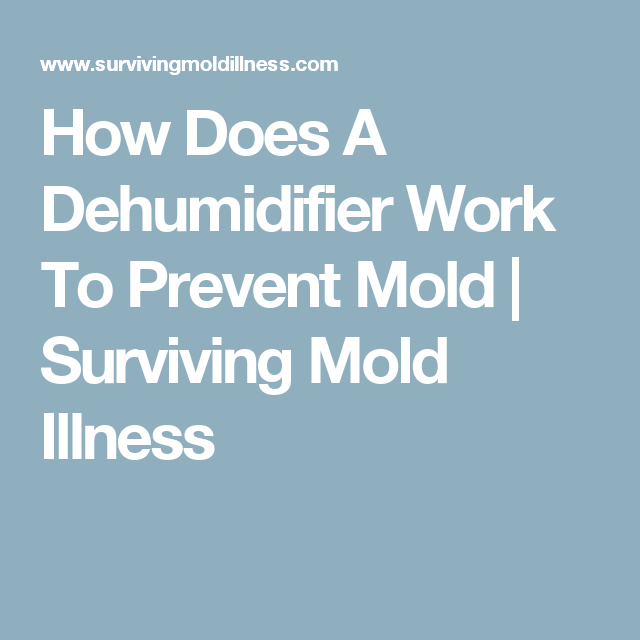 How Does A Dehumidifier Work To Prevent Mold