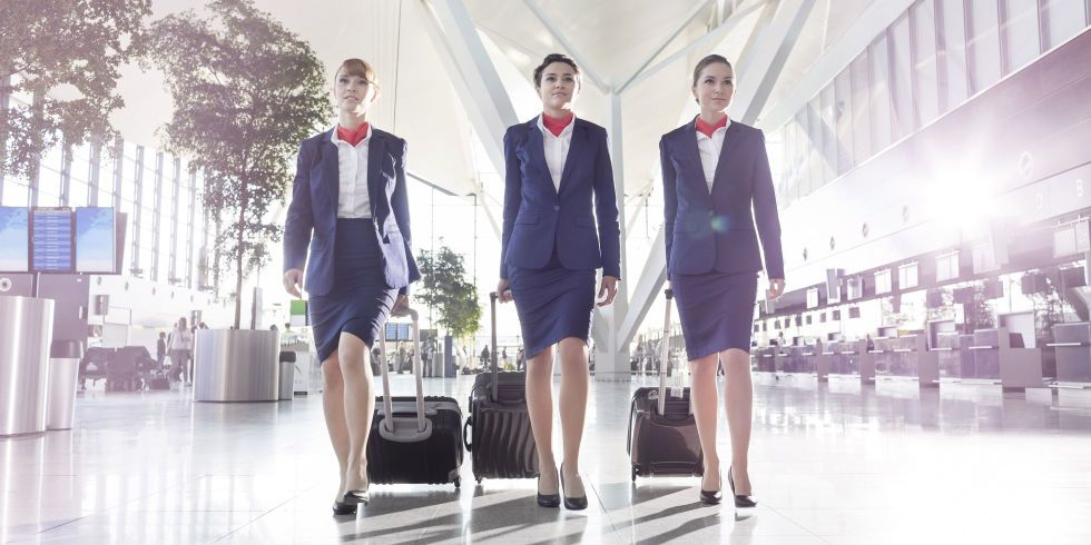 how to become a flight attendant nz