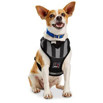 Star Wars Darth Vader Dog Harness At Petco Dog Harness War Dogs