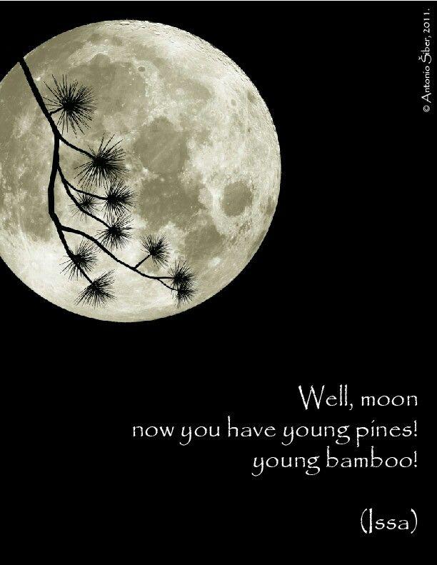 Well, moon...